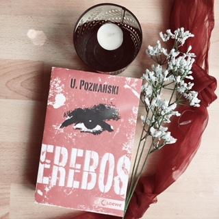 {Leseplanung} Herbst 2017 – diese Bücher will ich unbedingt baldlesen!