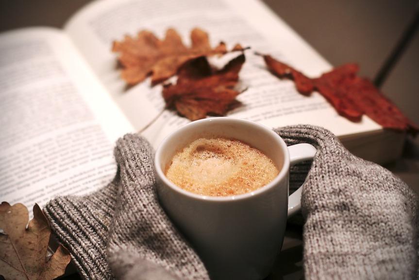Buch und Kakao - Leseplanung Winter - Bild: (pixabay.com/melkhagelslag)