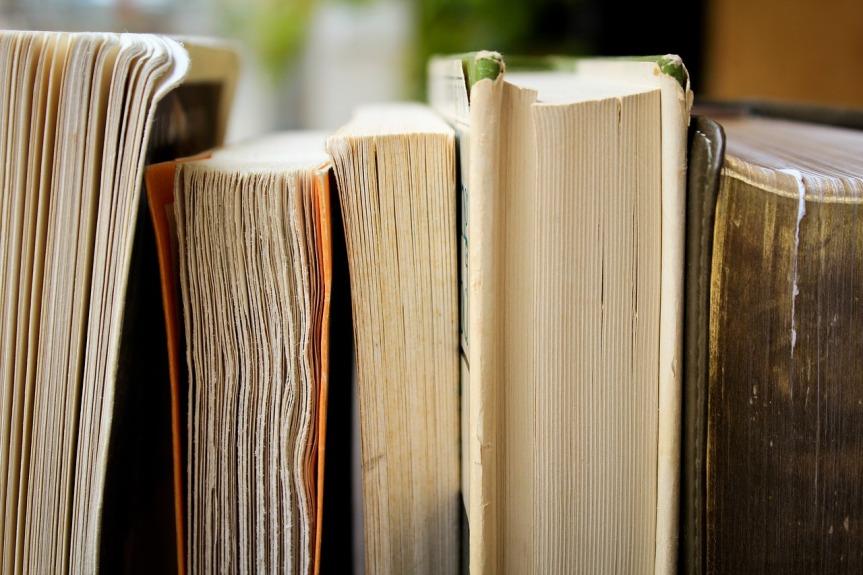 {Challenge} Lesechallenges 2019: Goodreads undAlt-SuB-Abbau